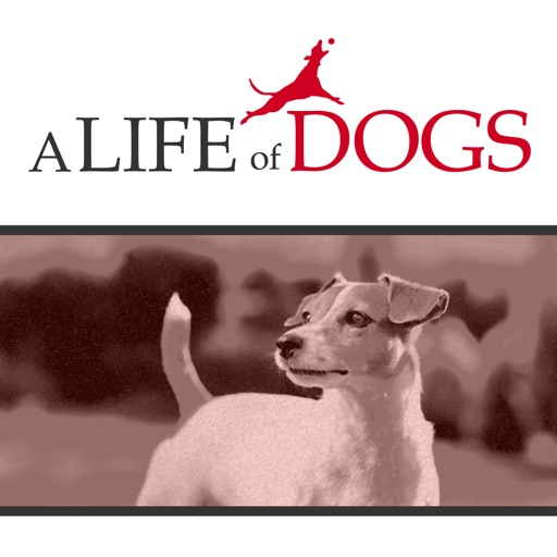 Cover image of A Life of Dogs