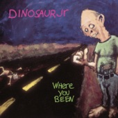Dinosaur Jr - Hide