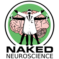 Naked Neuroscience, from the Naked Scientists podcast