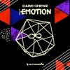 Sultan + Shepard - High on Emotion artwork
