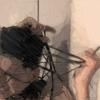 MATRANG - Провода artwork