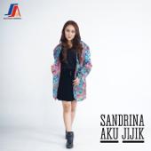 Download Lagu MP3 Sandrina - Aku Jijik