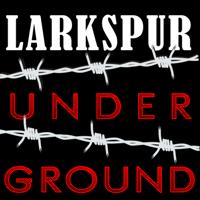 Podcast cover art for Larkspur Underground