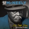 I m Still Here Big Jay Sings the Blues