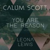 You Are the Reason (Duet Version) - Single
