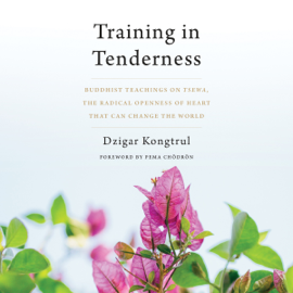 Training in Tenderness: Buddhist Teachings on Tsewa, the Radical Openness of Heart That Can Change the World (Unabridged) audiobook