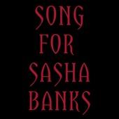 The Mountain Goats - Song for Sasha Banks