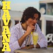 Domino - Havana