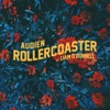 Rollercoaster feat Liam O Donnell Single