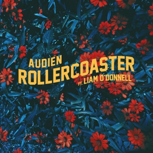 Rollercoaster (feat. Liam O'Donnell) - Single Mp3 Download