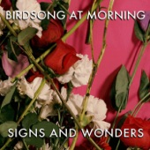 Birdsong at Morning - The Logical Song