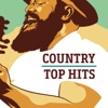 Chicken Fried by Zac Brown Band iTunes Track 13