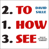 David Salle - How to See: Looking, Talking, and Thinking About Art (Unabridged)  artwork