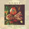 Silque - Na Na Na artwork
