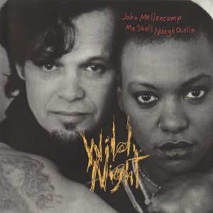 Wild Night (feat. Meshell Ndegeocello) - EP Mp3 Download
