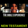 Zondervan - Inspired By … The Bible Experience Audio Bible - Today's New International Version, TNIV: New Testament  artwork