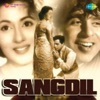 Sangdil Original Motion Picture Soundtrack EP