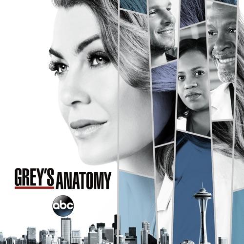 Grey's Anatomy, Season 14 poster