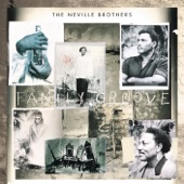 The Neville Brothers - One More Day