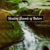 Healing Sounds of Nature - Relaxation, Meditation and Deep Sleep, Natural Music Therapy, Relaxing Water Sounds, Rain & River Sounds