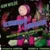 Kandy Krush Wideboy Remix EP