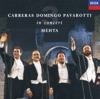 The Three Tenors in Concert, José Carreras, Luciano Pavarotti & Plácido Domingo
