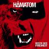 Hämatom - Warum kann ich nicht glücklich sein? artwork