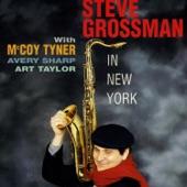 Steve Grossman - Good Bait