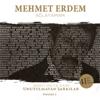 Mehmet Erdem - Ağlayamam (Ahmet Selçuk İlkan Unutulmayan Şarkılar, Vol. 2) artwork