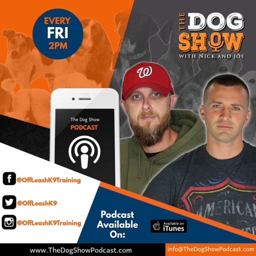 Cover image of The Dog Show with Nick and Joe