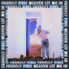 Heaven Let Me In - Friendly Fires
