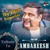 Hey Jaleela Kanvarlala - Tribute to Rebel Star Ambareesh