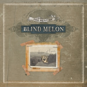 Blind Melon - Soak the Sin (Live)