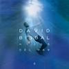 David Bisbal - Fue Nuestro Amor artwork