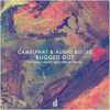 CamelPhat & Audio Bullys - Bugged Out (Mk Remix) artwork