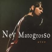 Ney Matogrosso - Homem de Neanderthal