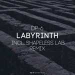 DP-6 - Labyrinth