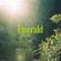 Emerald - Rini