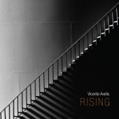Vicente Avella - Turning Off the Noise