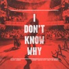 I Don t Know Why Vertue Remix Radio Edit Single