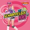 Topradio - De Schaamteloze 100, Vol. 4 - Various Artists