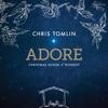 Chris Tomlin - Noel (feat. Lauren Daigle) [Live]