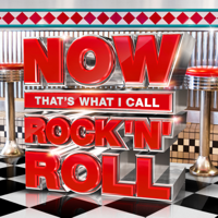 Various Artists - NOW That's What I Call Rock 'N' Roll artwork