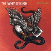 The Why Store - Working