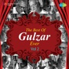 The Best of Gulzar Ever Vol 2 Single