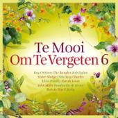 Te Mooi Om Te Vergeten Vol. 6