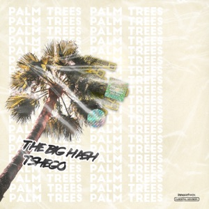 The Big Hash - Palm Trees feat. Tshego