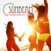 Sunbeam (feat. Pitbull) [Remixes] ジャケット写真