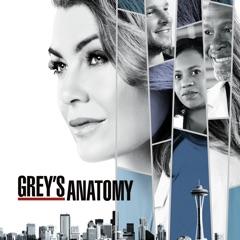 Grey's Anatomy, Season 14