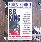 B.B. King & John Lee Hooker - You Shook Me